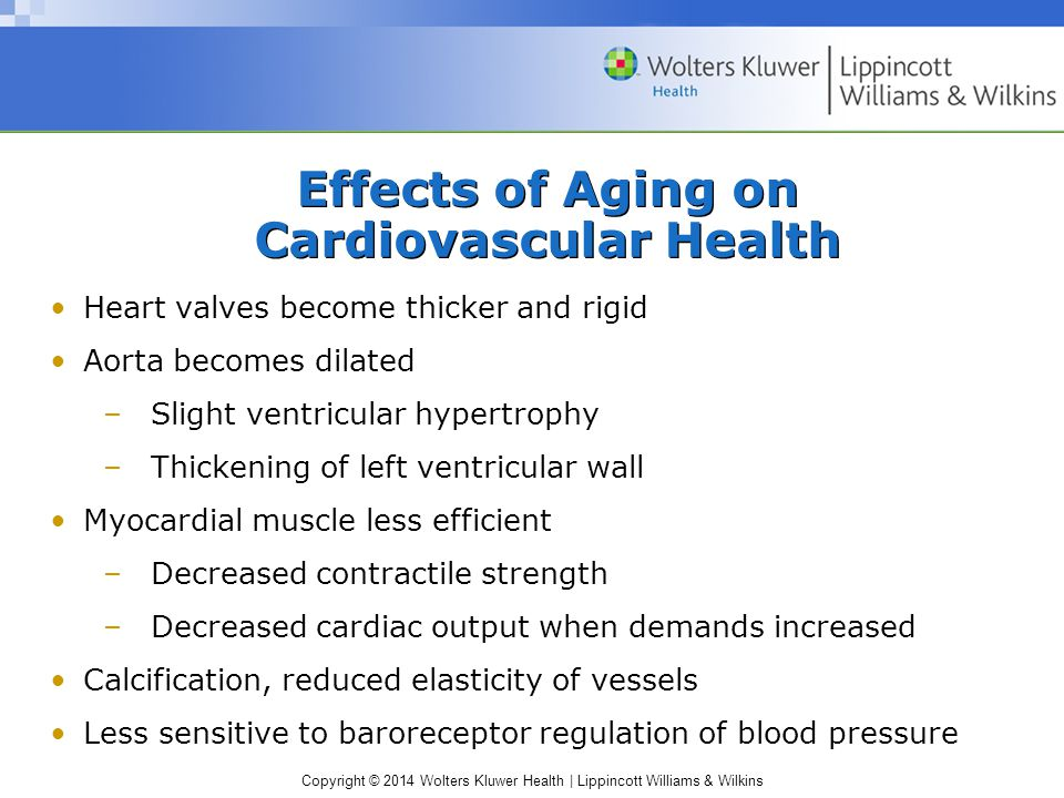 Effects of Aging on Cardiovascular Health