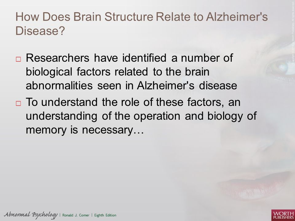 How Does Brain Structure Relate to Alzheimer s Disease