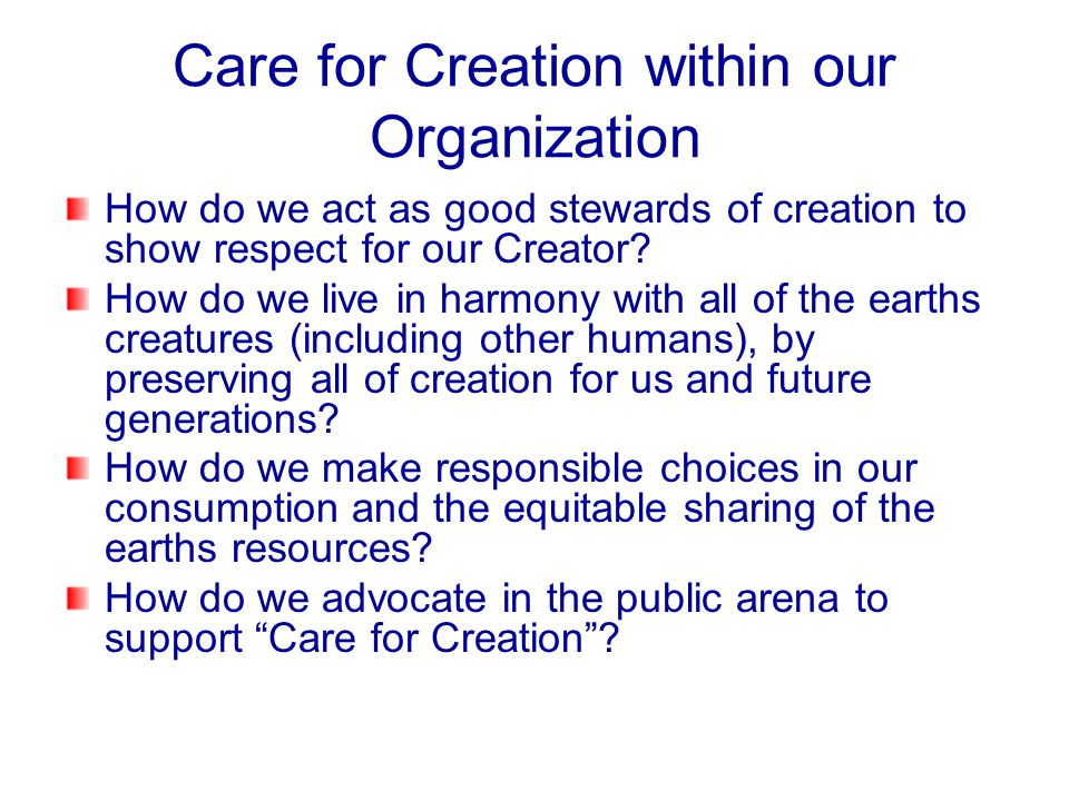 Care for Creation within our Organization