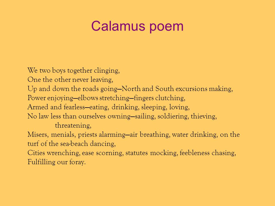 Calamus poem We two boys together clinging,