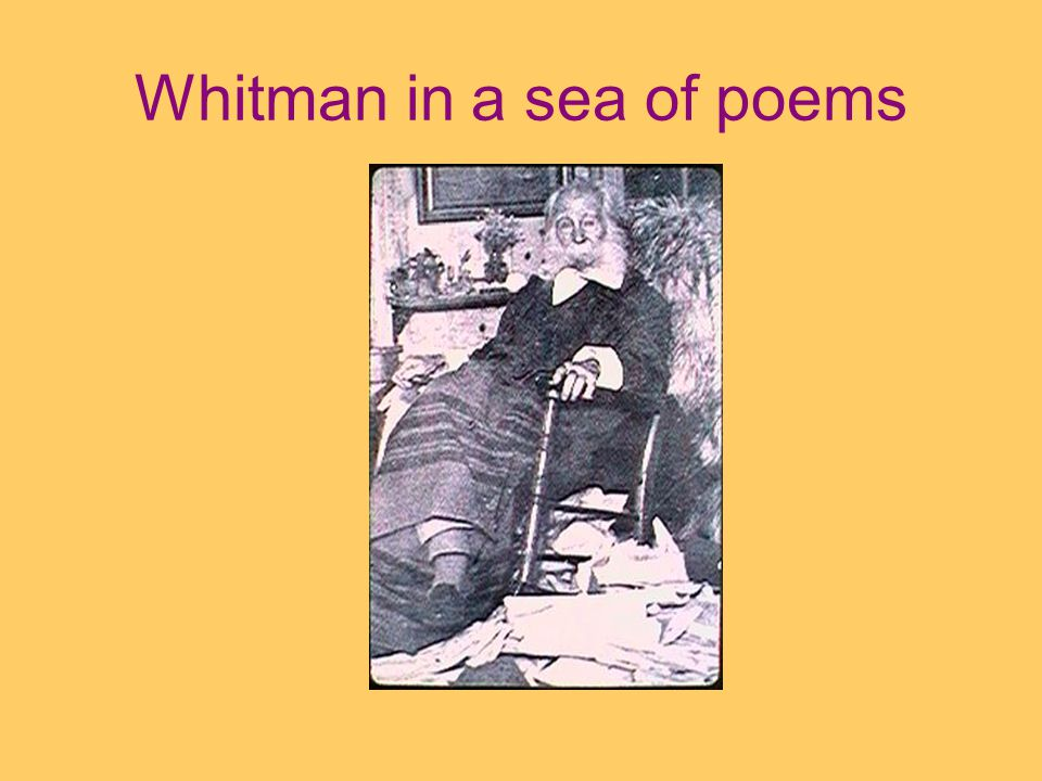 Whitman in a sea of poems