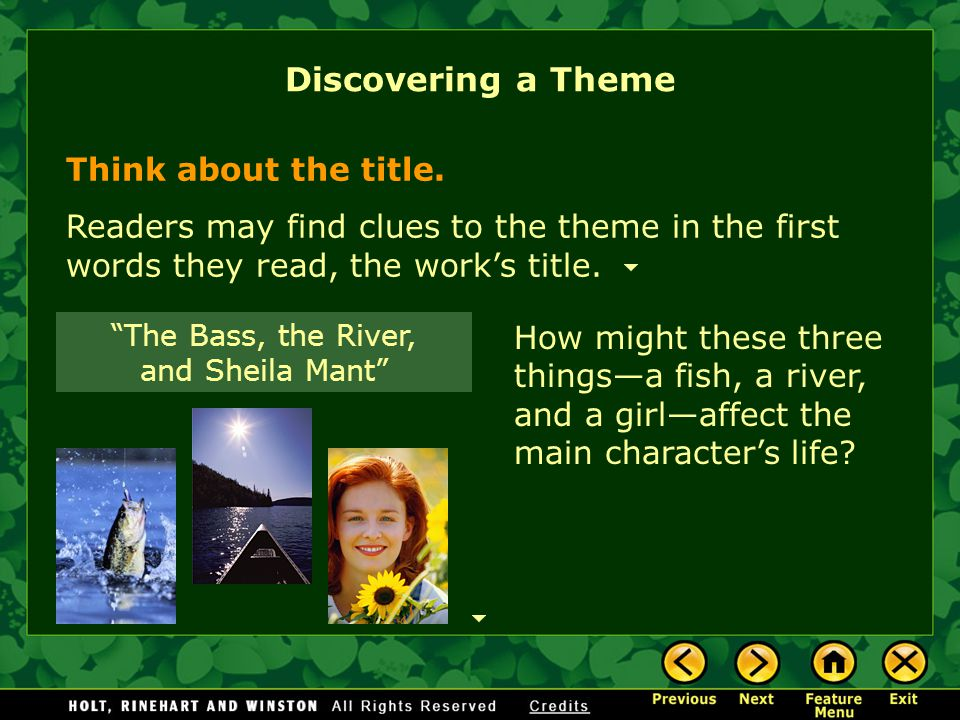 "the elements of fiction ppt  55 ""the bass the river and sheila mant"""