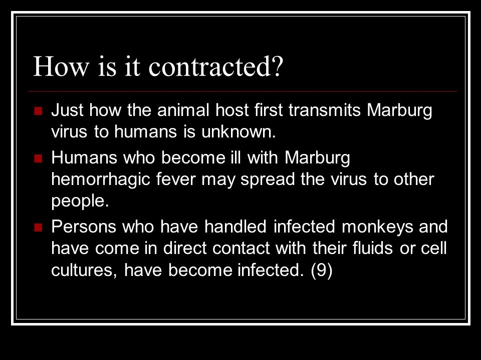 How is it contracted Just how the animal host first transmits Marburg virus to humans is unknown.