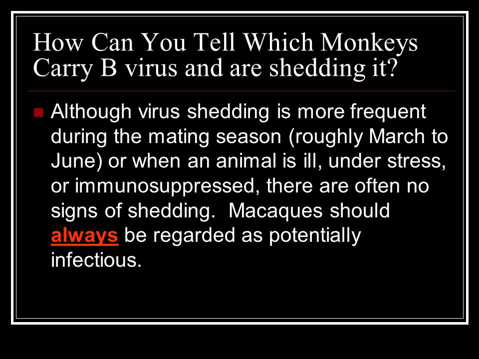 How Can You Tell Which Monkeys Carry B virus and are shedding it