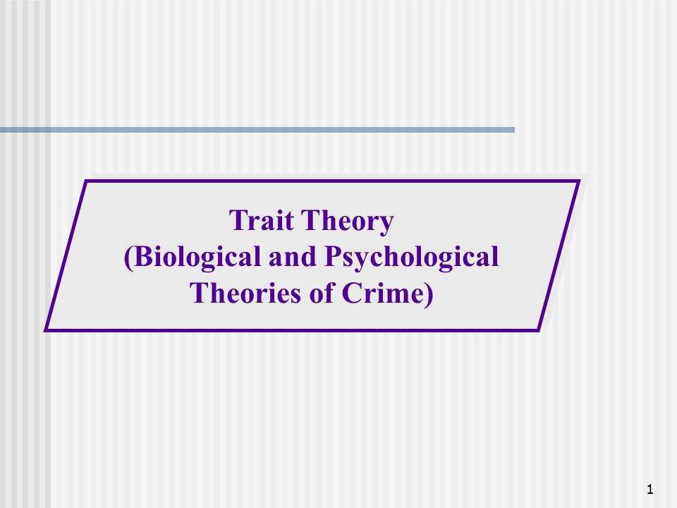 trait theory of crime 1 theories and causes of crime introduction there is no one 'cause' of crime crime is a highly complex phenomenon that changes across cultures.