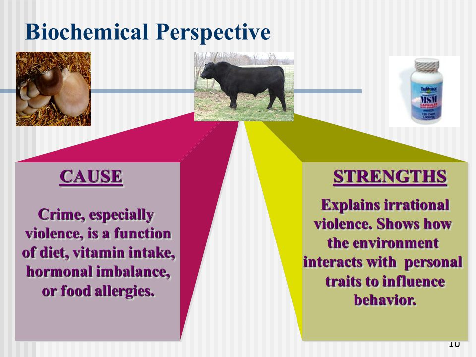 Biochemical Perspective