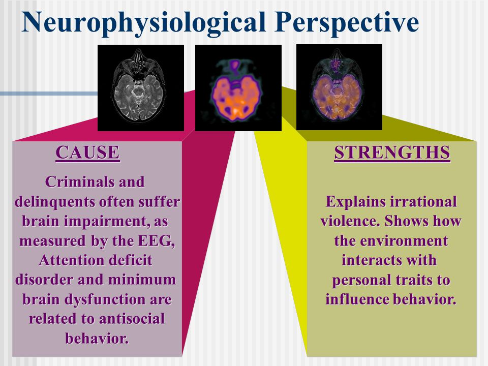 Neurophysiological Perspective