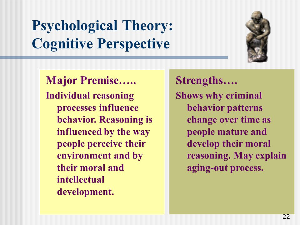 Psychological Theory: Cognitive Perspective