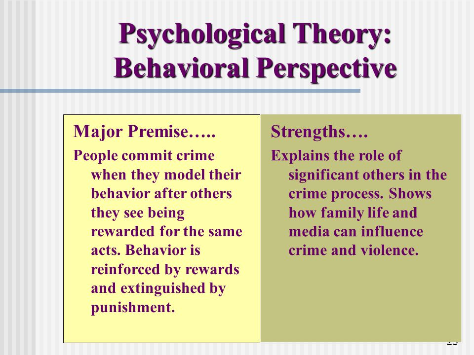 Psychological Theory: Behavioral Perspective