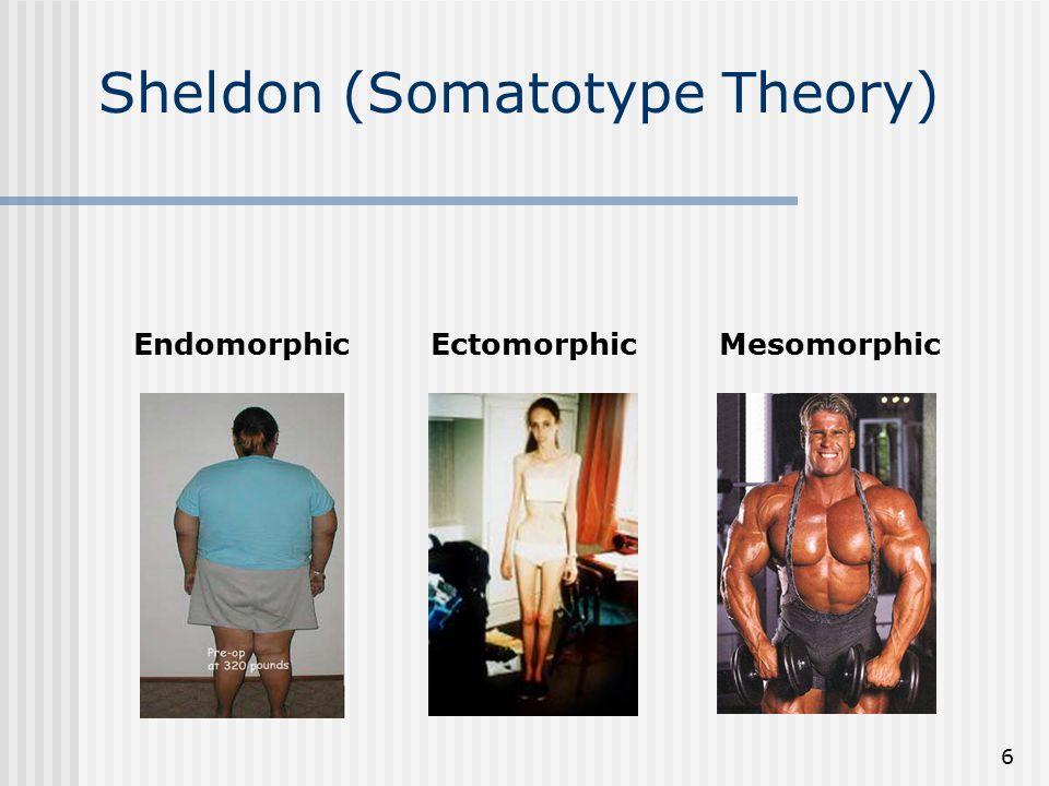 Sheldon (Somatotype Theory)