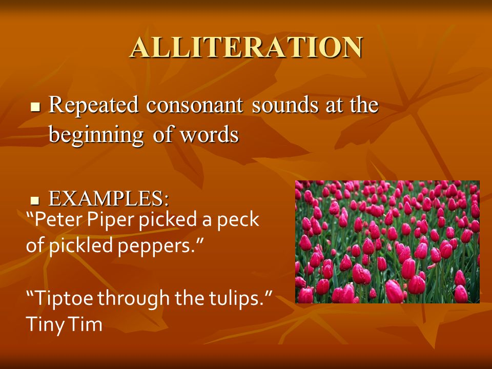 ALLITERATION Repeated consonant sounds at the beginning of words