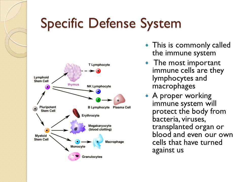 Specific Defense System
