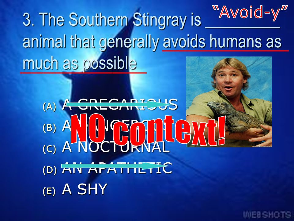 Avoid-y 3. The Southern Stingray is _________ animal that generally avoids humans as much as possible.