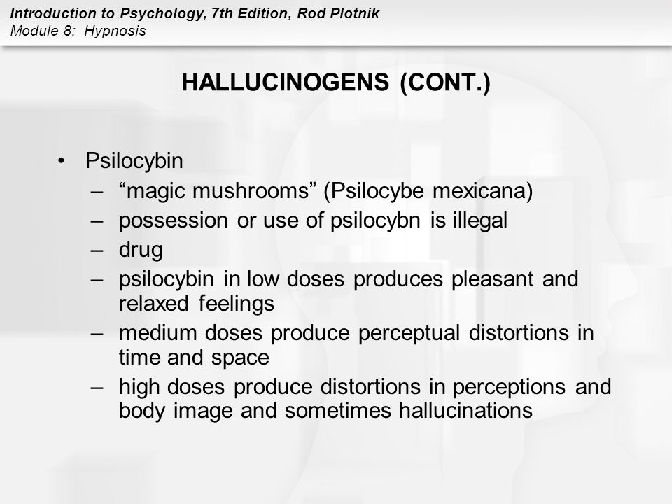HALLUCINOGENS (CONT.) Psilocybin