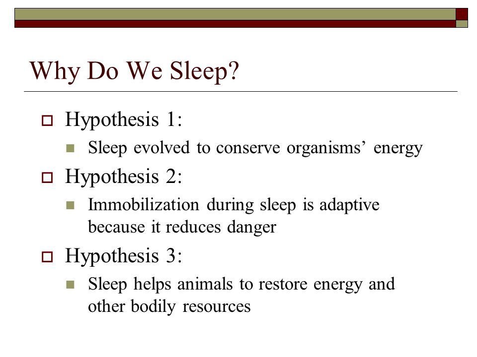 Why Do We Sleep Hypothesis 1: Hypothesis 2: Hypothesis 3: