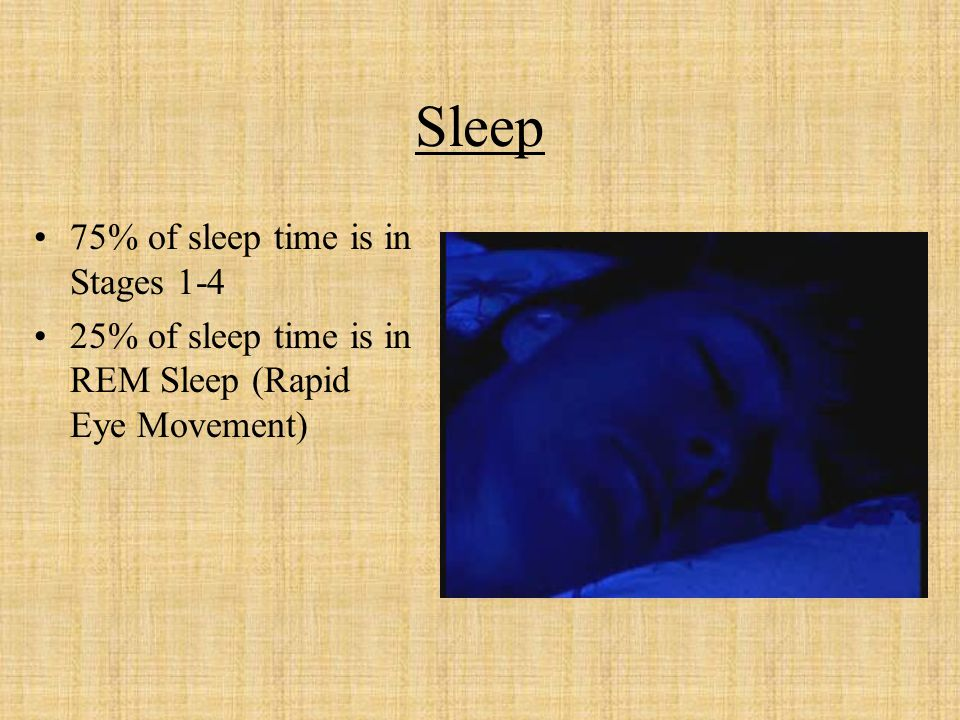 Sleep 75% of sleep time is in Stages 1-4