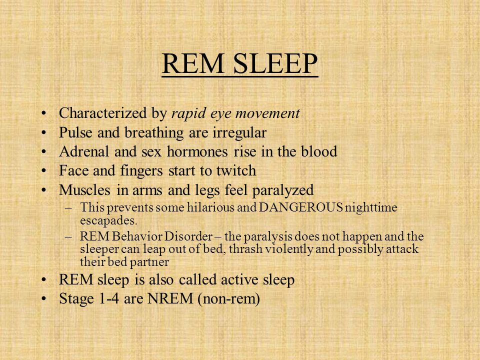 REM SLEEP Characterized by rapid eye movement