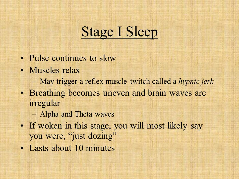 Stage I Sleep Pulse continues to slow Muscles relax