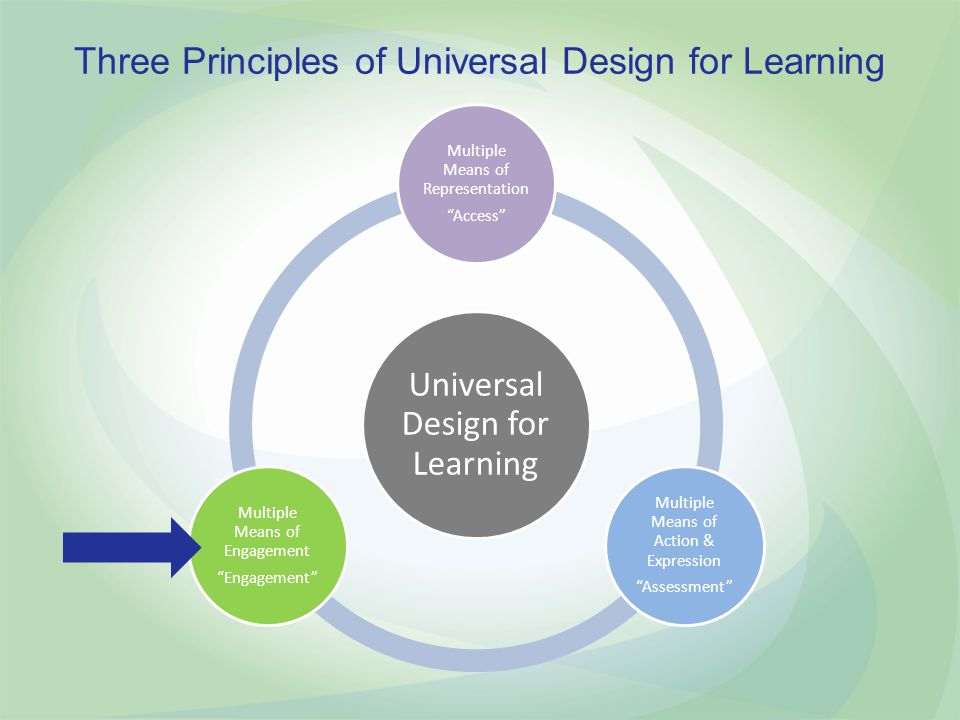 Three Principles of Universal Design for Learning