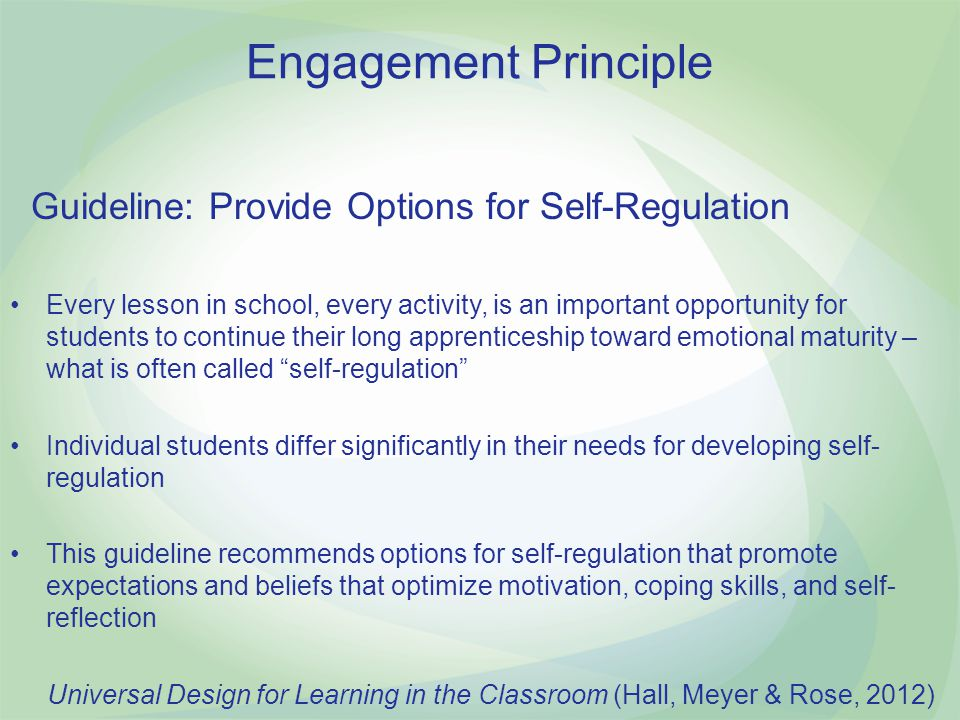 Engagement Principle Guideline: Provide Options for Self-Regulation