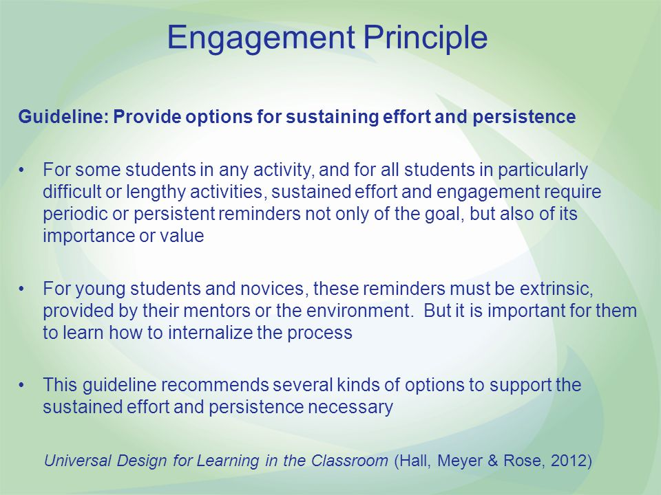 Engagement Principle Guideline: Provide options for sustaining effort and persistence.