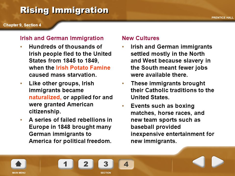 Rising Immigration Irish and German Immigration