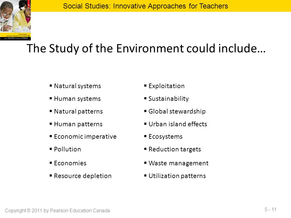 The Study of the Environment could include…