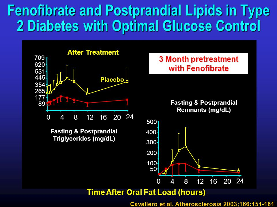 Fenofibrate and Postprandial Lipids in Type 2 Diabetes with Optimal Glucose Control