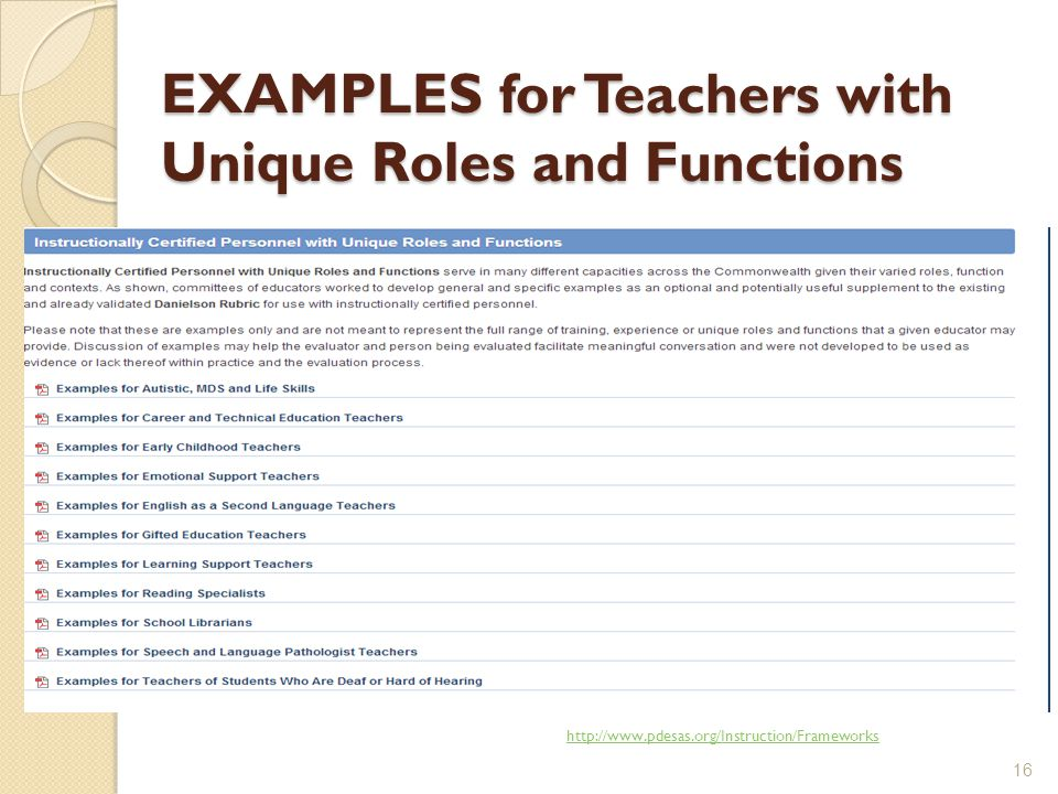 EXAMPLES for Teachers with Unique Roles and Functions