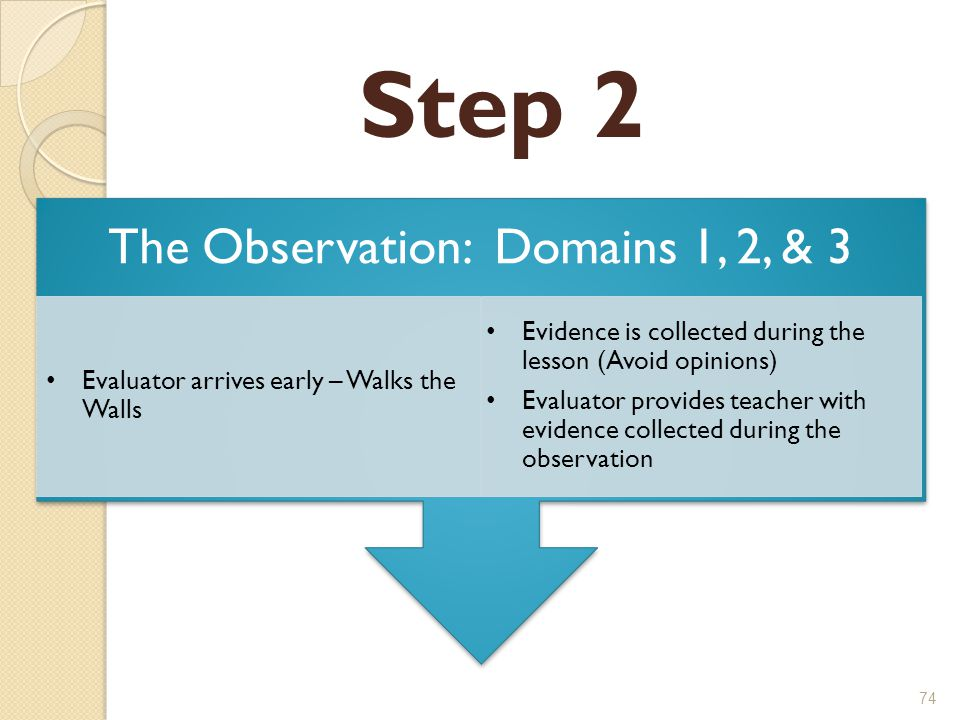 Step 2 The Observation: Domains 1, 2, & 3