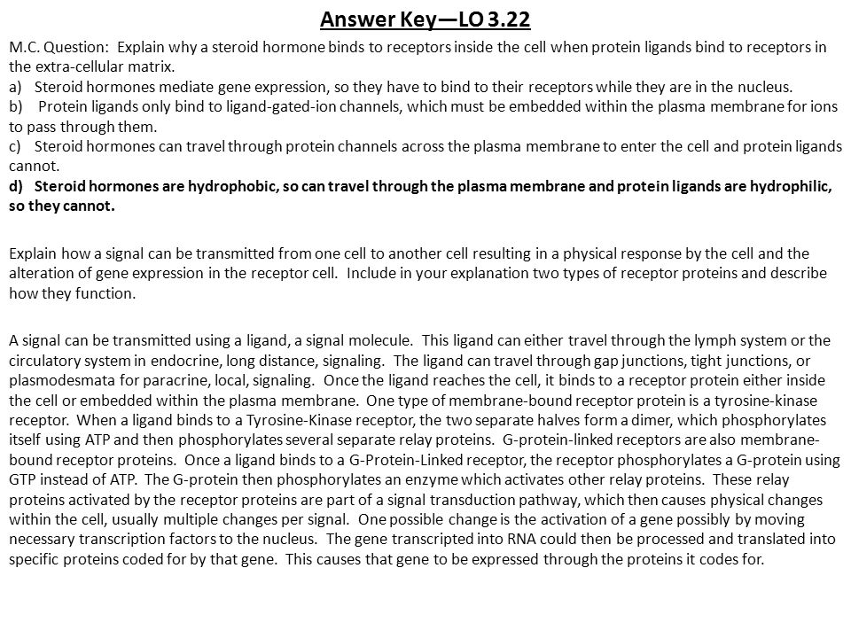 Answer Key—LO 3.22
