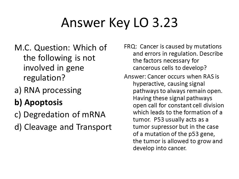 Answer Key LO 3.23