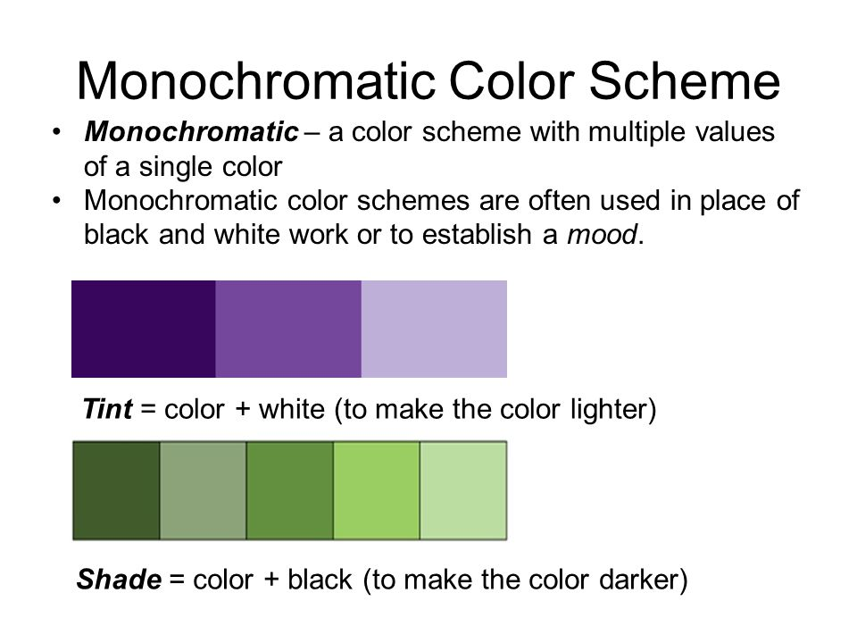 Monochromatic Color Scheme
