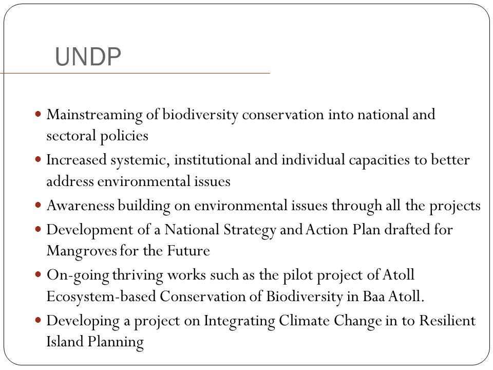 UNDP Mainstreaming of biodiversity conservation into national and sectoral policies.