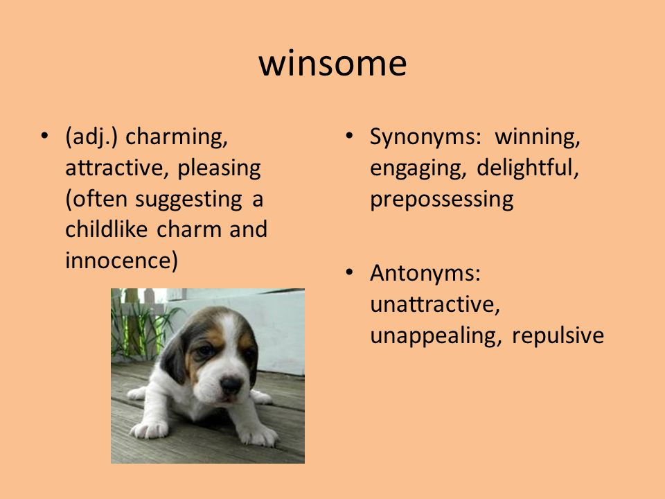 winsome (adj.) charming, attractive, pleasing (often suggesting a childlike charm and innocence)