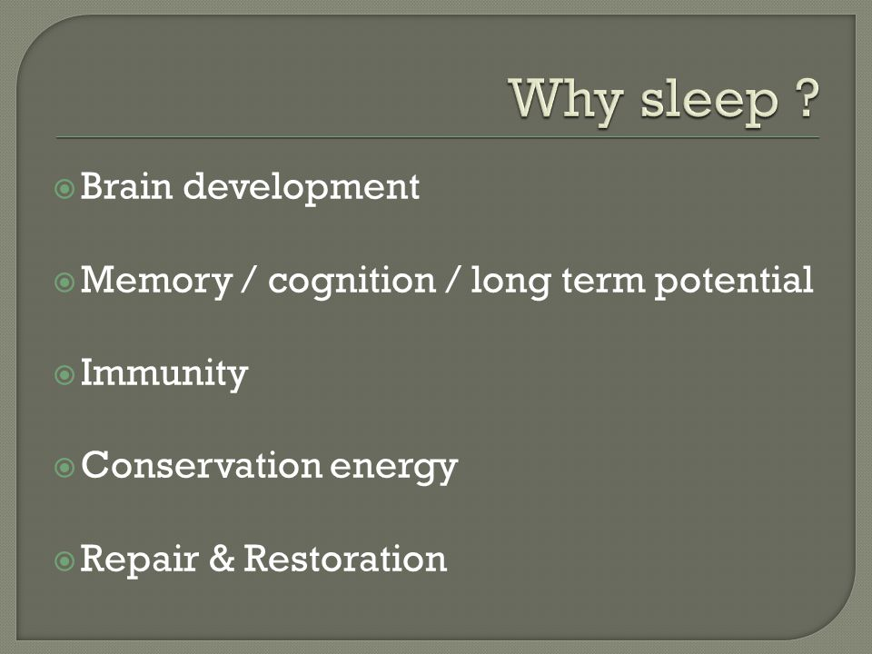 Why sleep Brain development Memory / cognition / long term potential