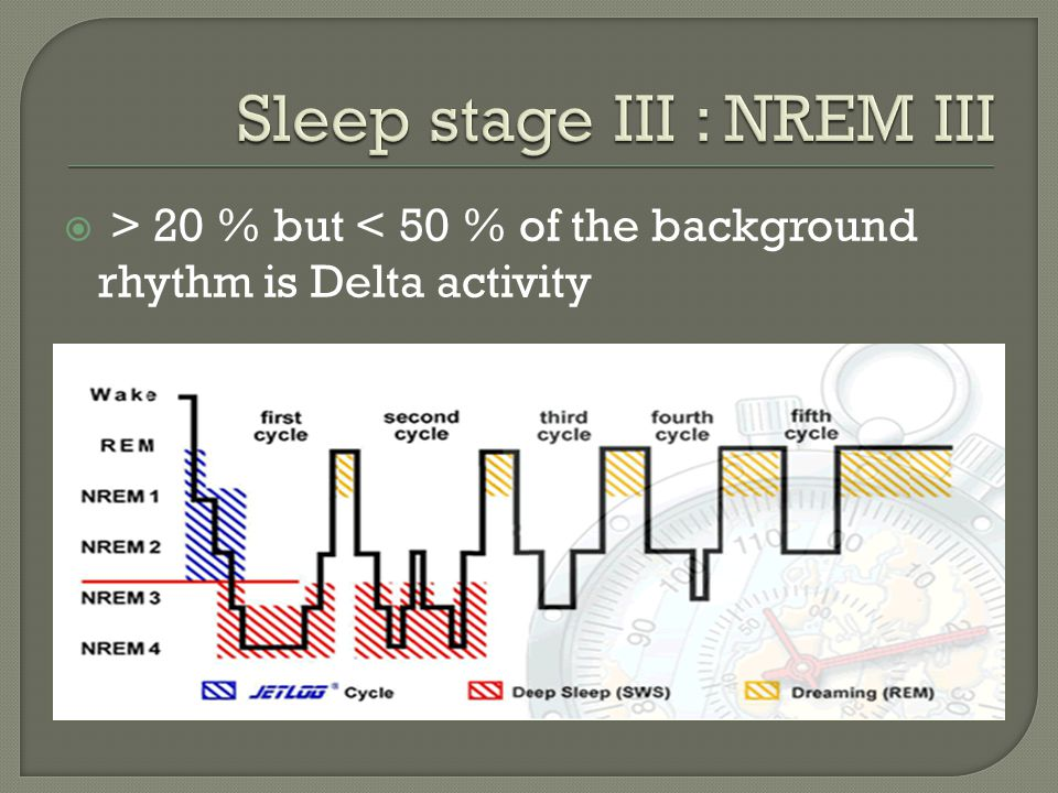 Sleep stage III : NREM III