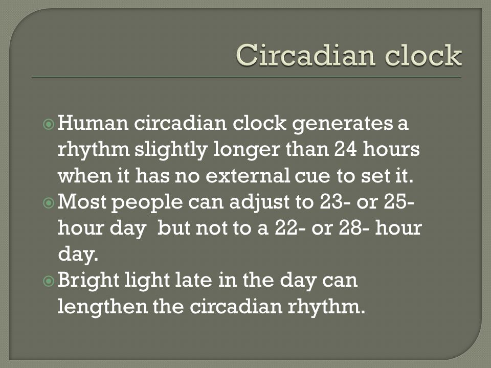 Circadian clock Human circadian clock generates a rhythm slightly longer than 24 hours when it has no external cue to set it.