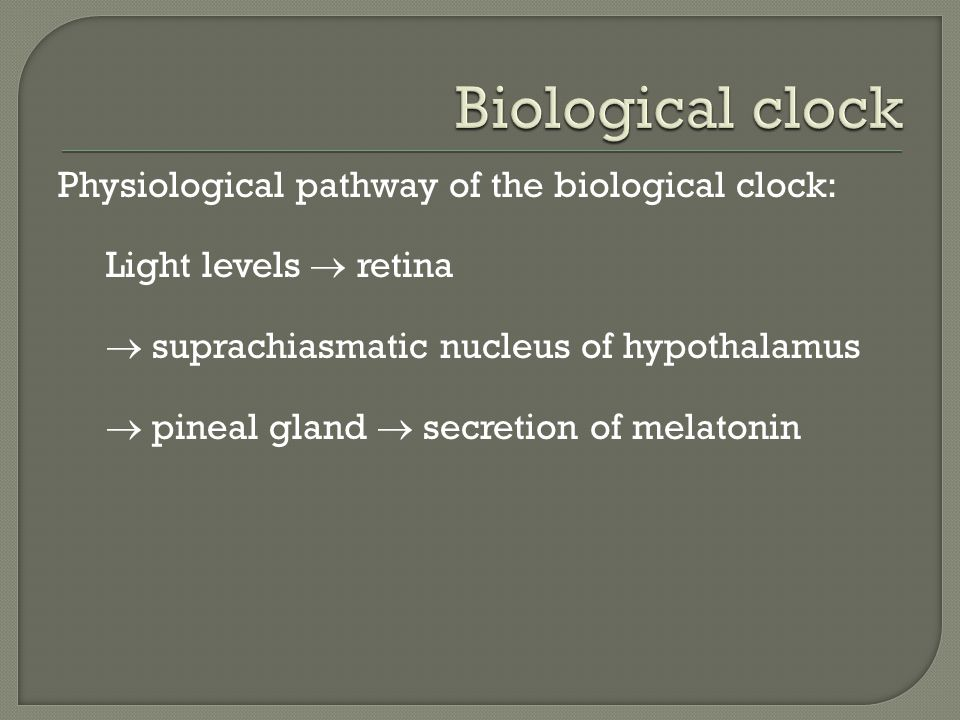 Biological clock Physiological pathway of the biological clock: