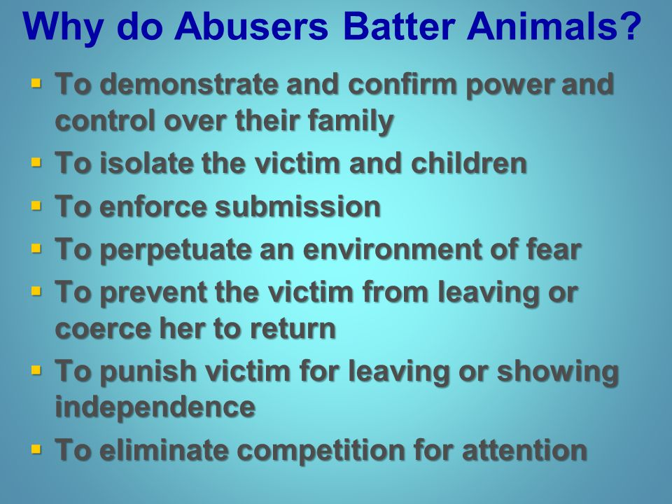 Why do Abusers Batter Animals