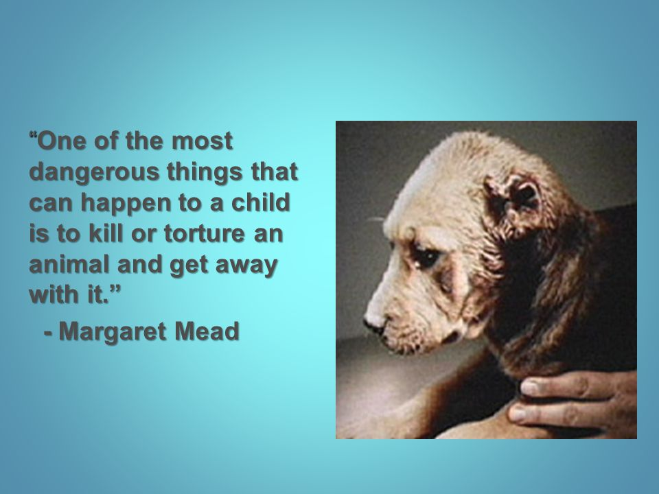 One of the most dangerous things that can happen to a child is to kill or torture an animal and get away with it.