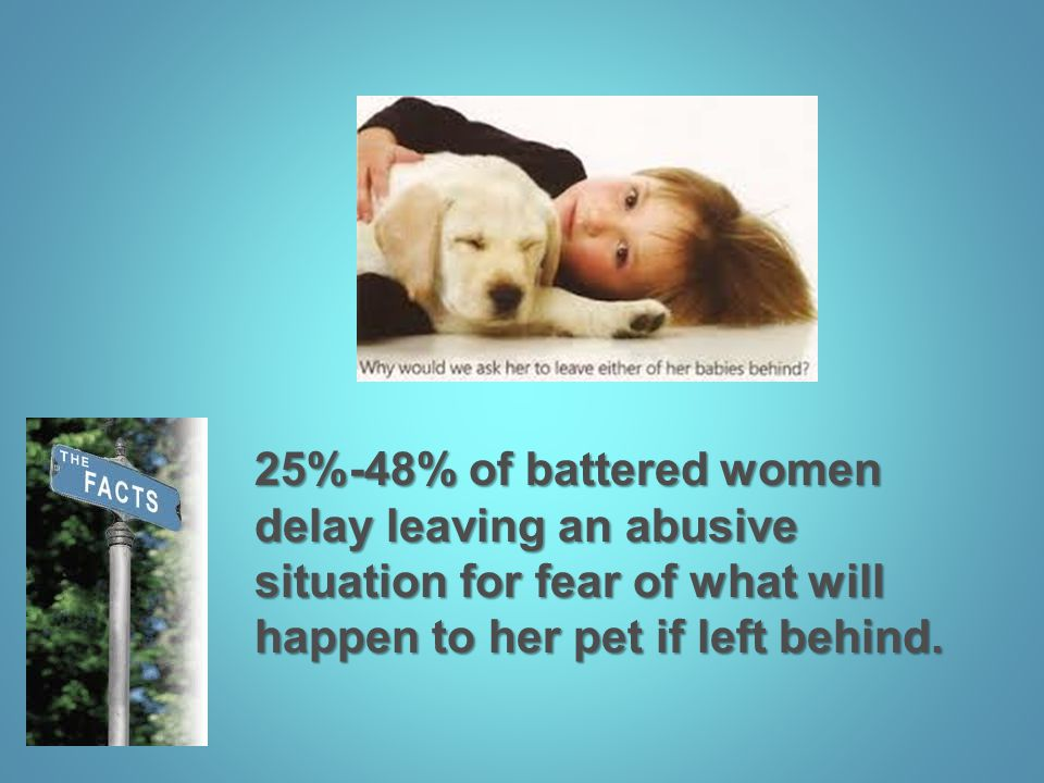 25%-48% of battered women delay leaving an abusive situation for fear of what will happen to her pet if left behind.