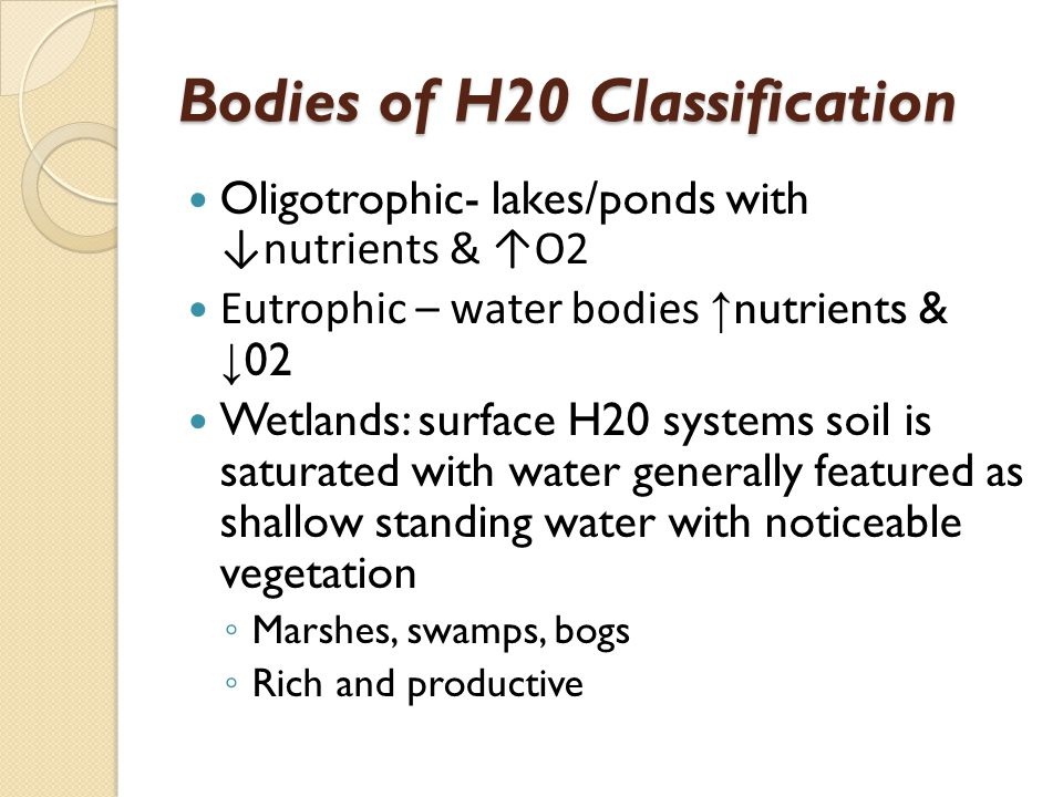 Bodies of H20 Classification
