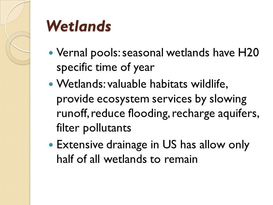 Wetlands Vernal pools: seasonal wetlands have H20 specific time of year.