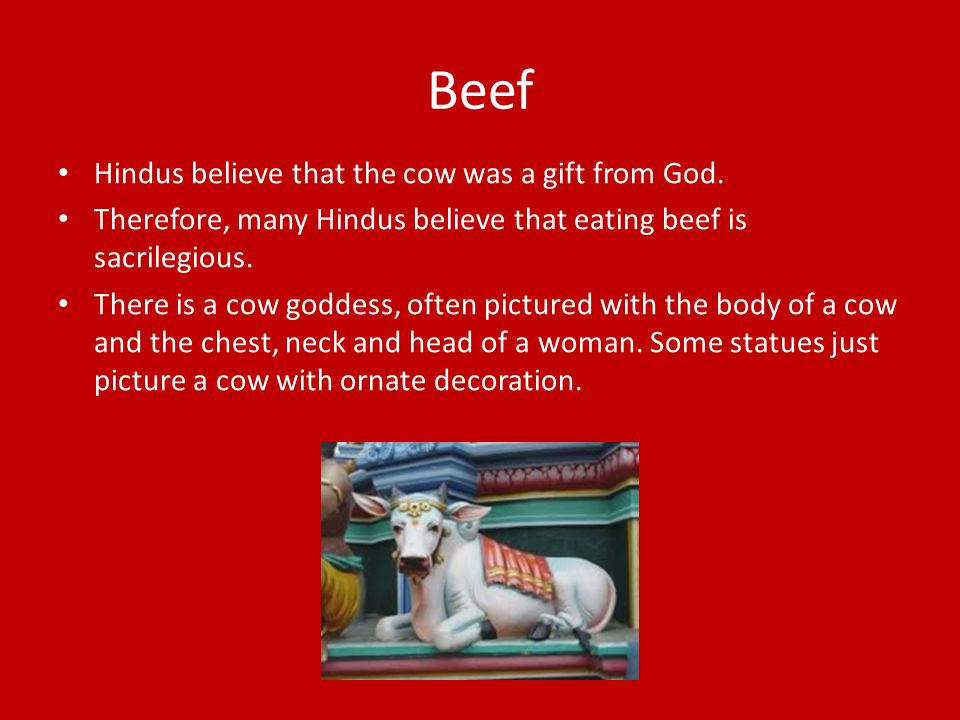 Beef Hindus believe that the cow was a gift from God.