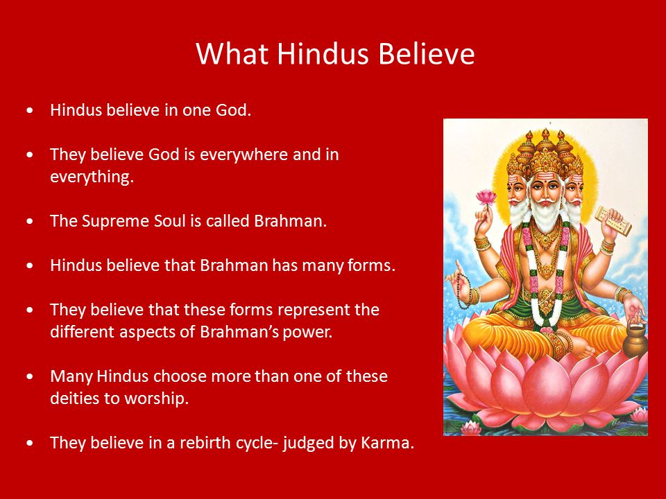 What Hindus Believe Hindus believe in one God.