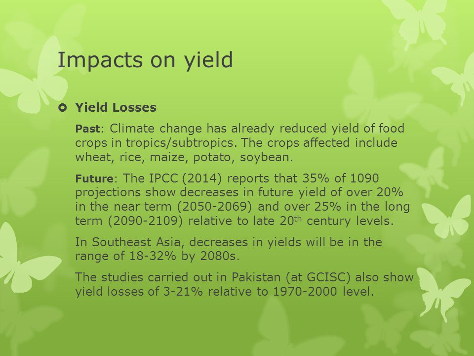 Impacts on yield Yield Losses