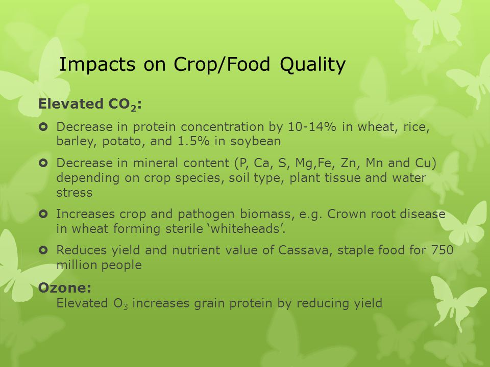 Impacts on Crop/Food Quality