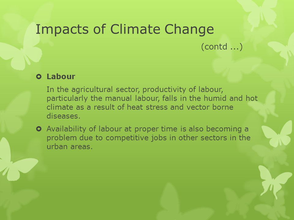 Impacts of Climate Change (contd ...)