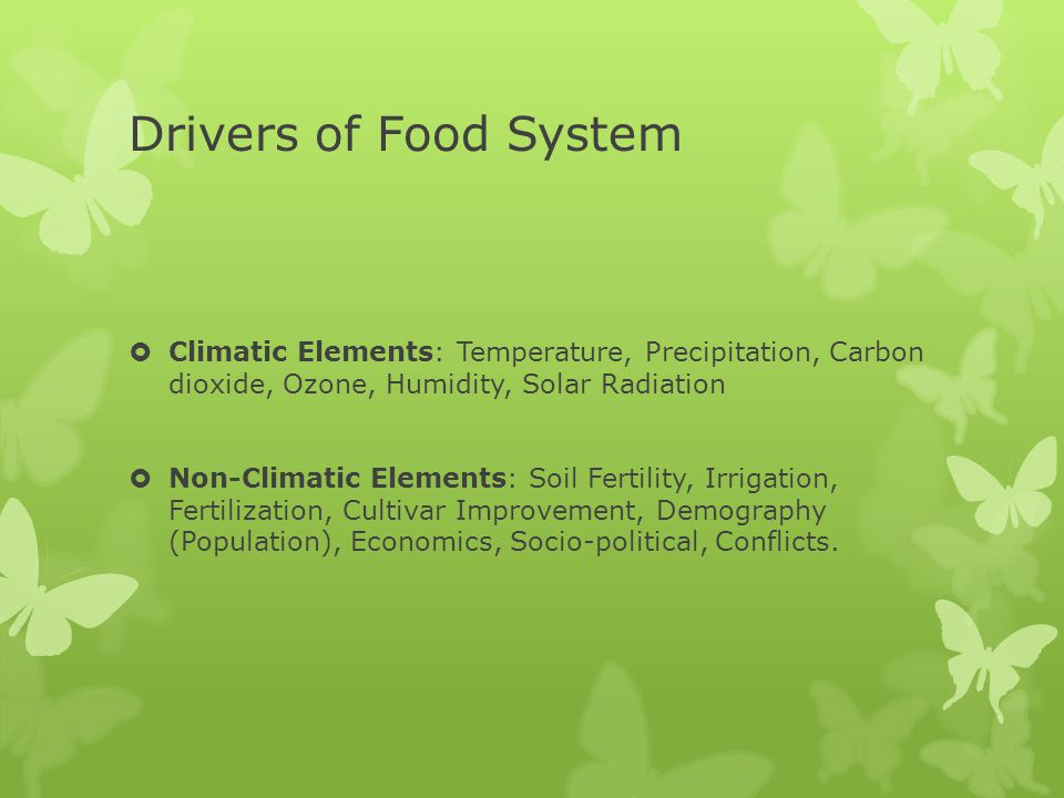 Drivers of Food System Climatic Elements: Temperature, Precipitation, Carbon dioxide, Ozone, Humidity, Solar Radiation.